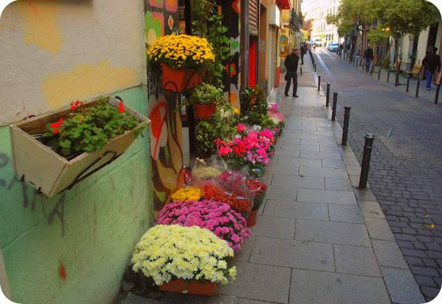 Floristería Calle Espiritu Santo, Malasaña