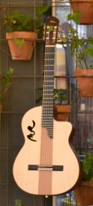 Manuel Rodríguez Guitarras